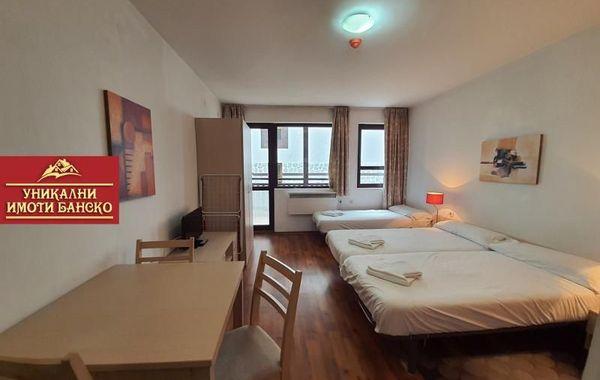 едностаен апартамент банско wnmebl3a