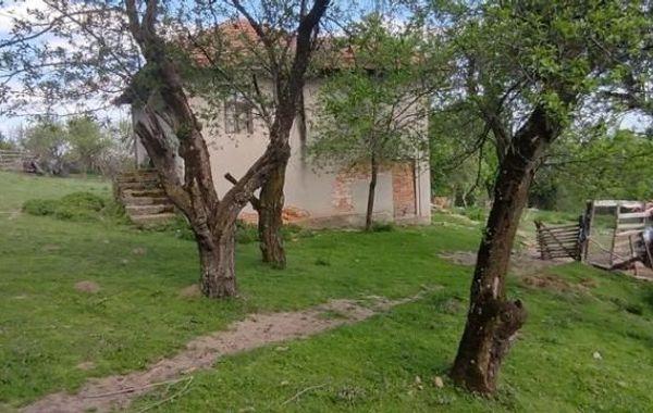 къща елена xgndswtr