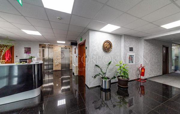 офис софия 1u8vq95s