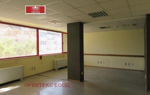 офис софия 71dvbv5q
