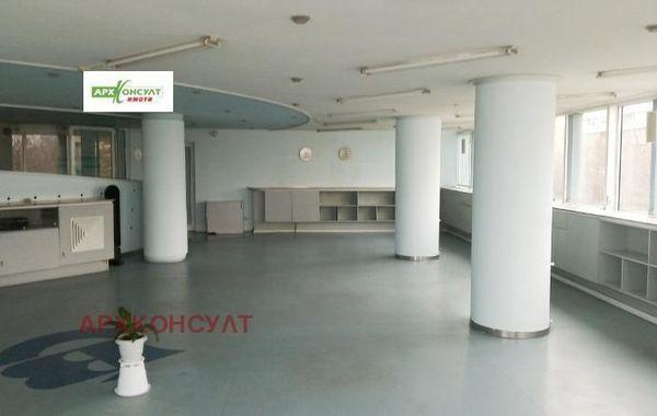 офис софия k49tf3ng