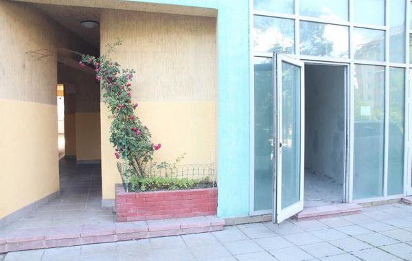 офис софия nlkutuq5