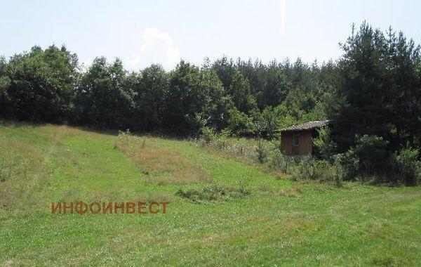 парцел велинград gtyg9w45