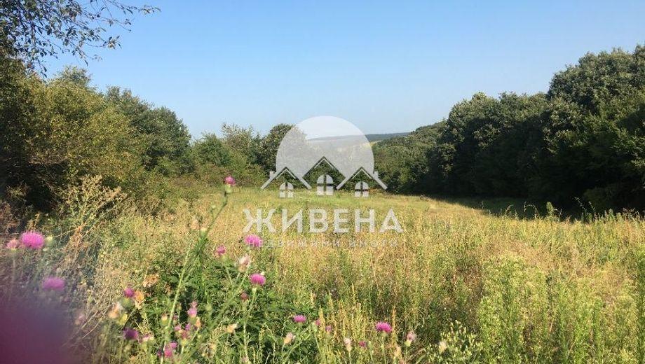 парцел здравец xev81kw1