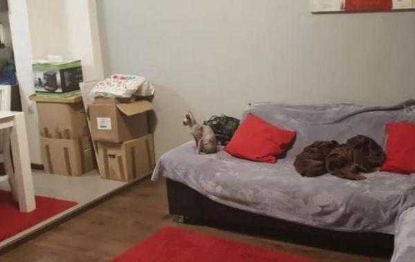 тристаен апартамент софия 45d6wvrv