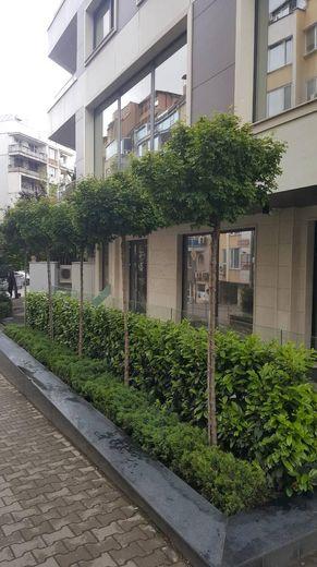 тристаен апартамент софия nn1xrhau